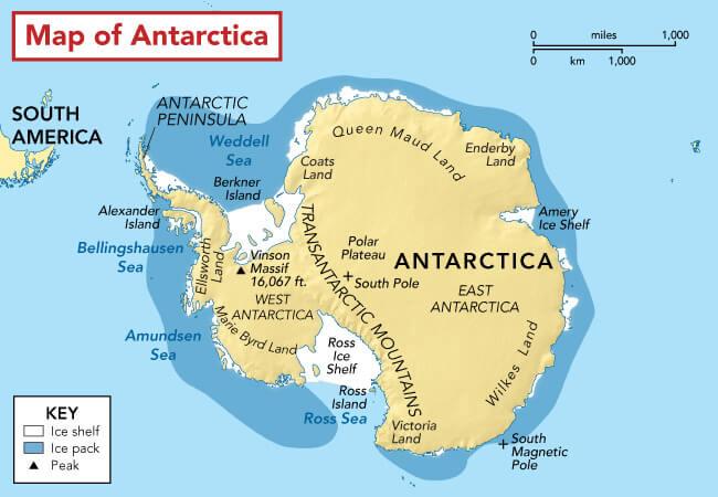 Penguin habitat map
