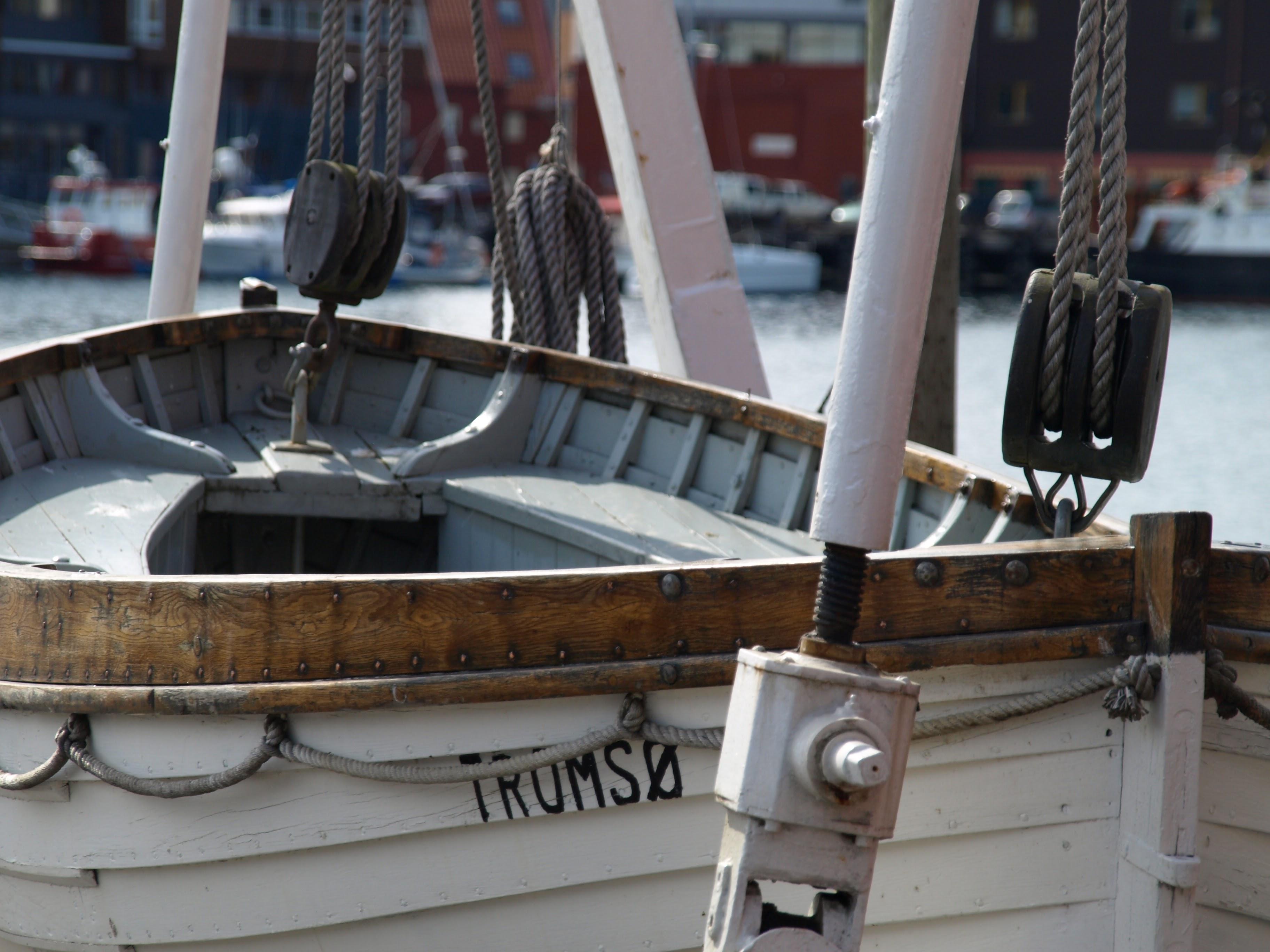 zeilen Noorwegen walvissafari Vesteralen Tromso zeilvakantie sailing norway SeaWind ship